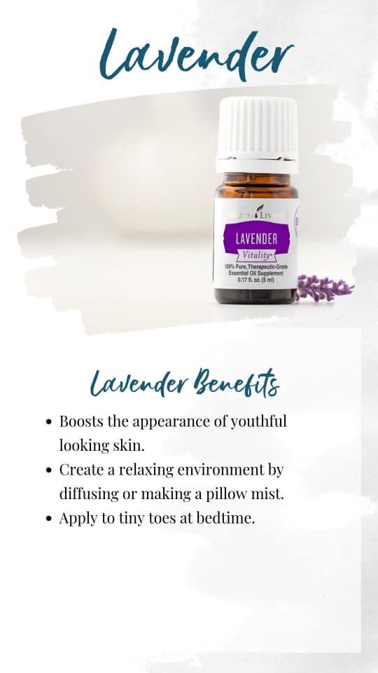8-Lavender